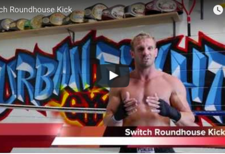 Switch Roundhouse Kick